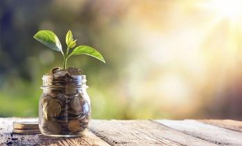 بازاریابی سبز چیست و چطور باعث ارتقای کسب و کارتان می شود؟